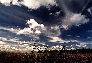 Wolken (19 Bilder)