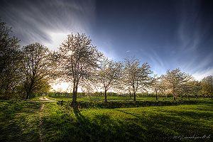 Natur (12 Bilder)